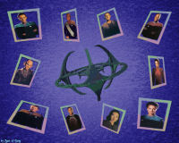 DS9 Wallpaper,Star Trek,Startrek,Trek,Spot of Borg