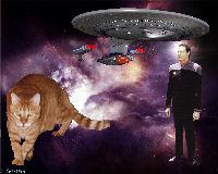 TNG Wallpaper,Star Trek,Startrek,Trek,Spot of Borg